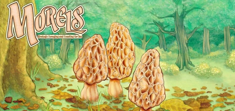 Morels 2 Player Board Game