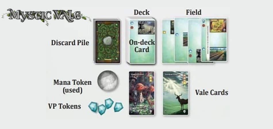 Mystic Vale Card Setup