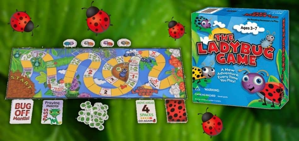The Ladybug Kids Board Game Box and Components